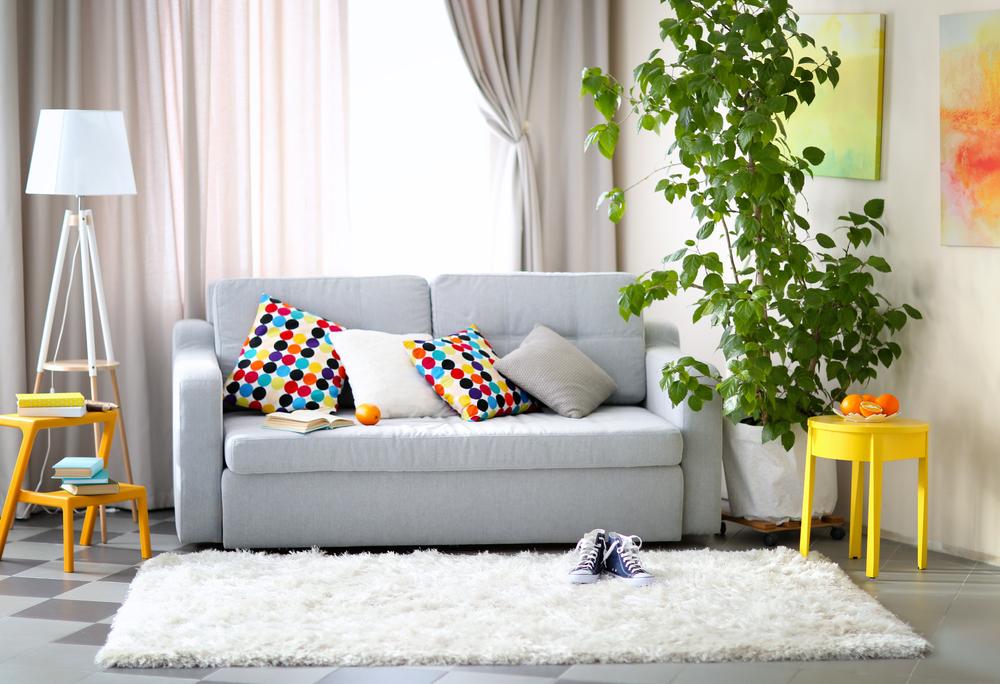 dywan w domu