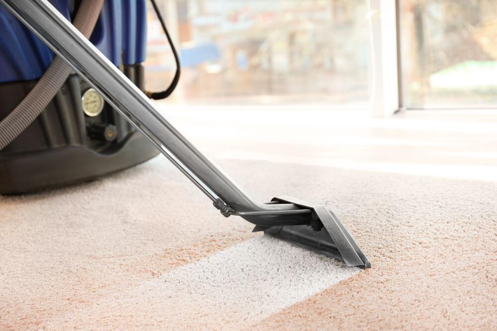 Pielegnacja dywanow w domach, gdzie mieszkaja czworonogi